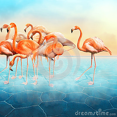 Free Beautiful Photo Manipulation Of Red Flamingo At Left Side Stock Images - 87458774