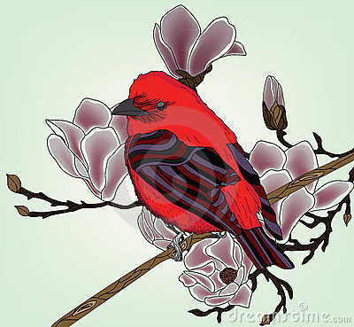 Beautiful picture with bullfinch