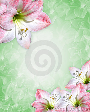 Free Beautiful Pink Flowers Border Stock Image - 7806621
