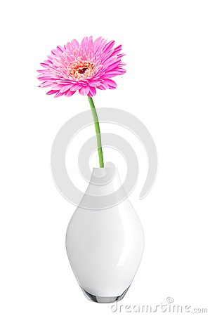 Free Beautiful Pink Gerbera Daisy Flower In Vase Stock Photography - 39552512