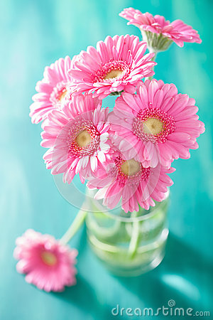 Free Beautiful Pink Gerbera Flowers Bouquet In Vase Royalty Free Stock Images - 57814489
