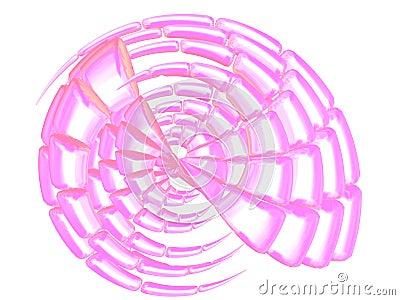 Beautiful pink shell on white