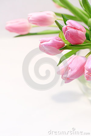 Free Beautiful Pink Tulips In The Vase Royalty Free Stock Image - 28866086
