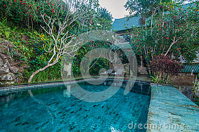 Beautiful pool outdoor stock photo image 51112725 for Green garden pool jakarta