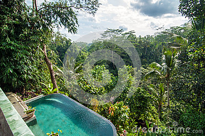 Beautiful pool outdoor stock photo image 51499257 for Green garden pool jakarta