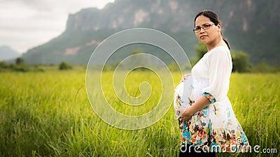 Beautiful Pregnant Asian Woman in Rice Field