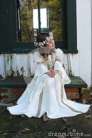 Free Beautiful Princess Stock Photography - 3560322