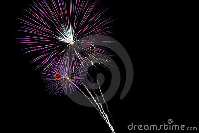 Beautiful Purple Fireworks Bursts Black Sky