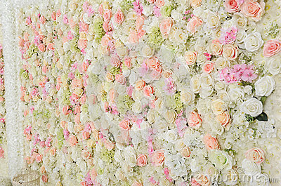 beautiful real flower background stock photo image of
