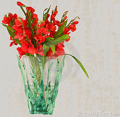 Beautiful Red Gladiolus Flower Vase