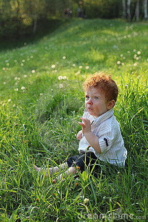 Beautiful red-haired boy on grass