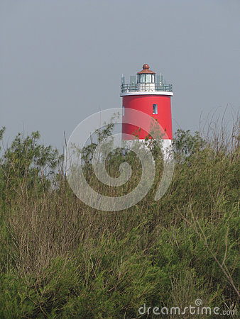 Red forest lighthouse