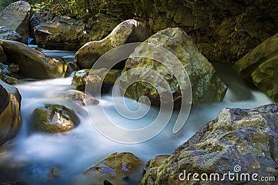 Beautiful river flowing among rocks