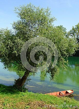 Beautiful River Una