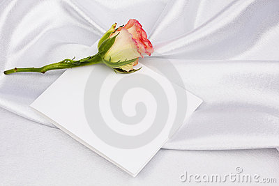 Beautiful rose and card for your text