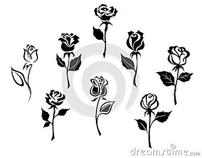 Beautiful roses set