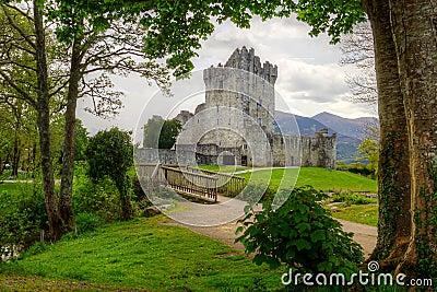 Beautiful Ross castle in Ireland