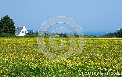 Beautiful rural landscape of Belle-Ile-en-Mer