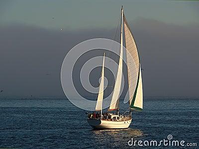 Beautiful sailboat cruising 2