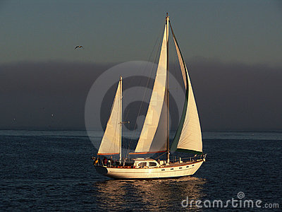 Beautiful sailboat cruising