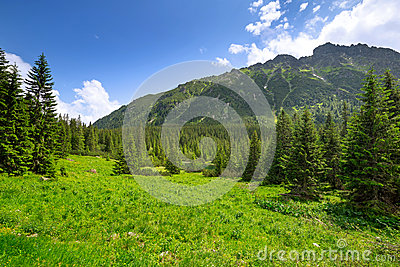 Beautiful scenery of Tatra mountains