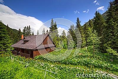 Beautiful scenery of Tatra mountains