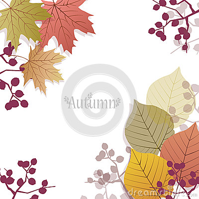Beautiful seasonal Background with autumn leaves and berries