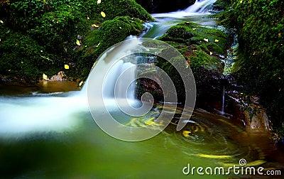 A beautiful secret Scottish waterfall.