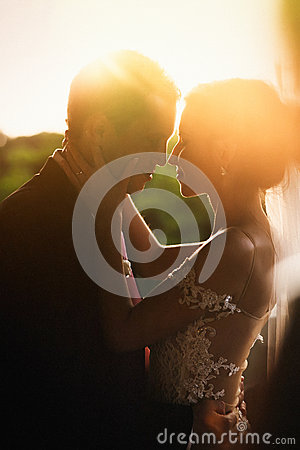 Free Beautiful Sensual Brunette Bride And Handsome Groom Hugging At S Stock Photography - 67003632
