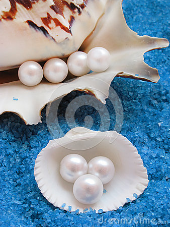 Beautiful shells and pearls