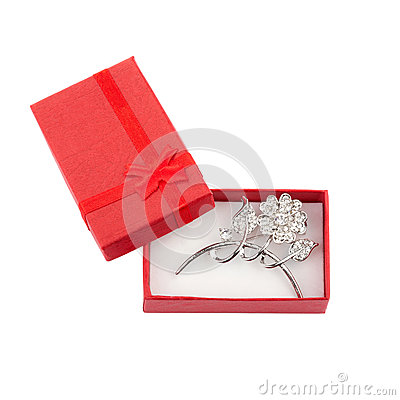 Beautiful silver brooch in a red gift box