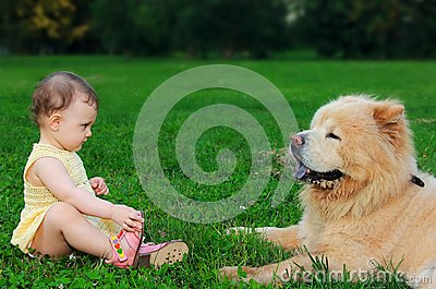 Beautiful small baby girl looking at dog