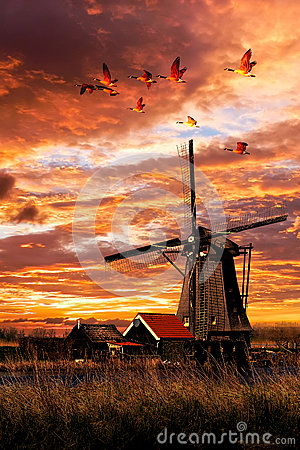 Free Beautiful Smock Ground Sailer Windmill Stock Photography - 59302682