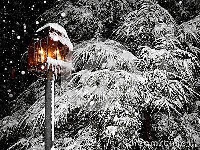 Beautiful, snowy winter scene