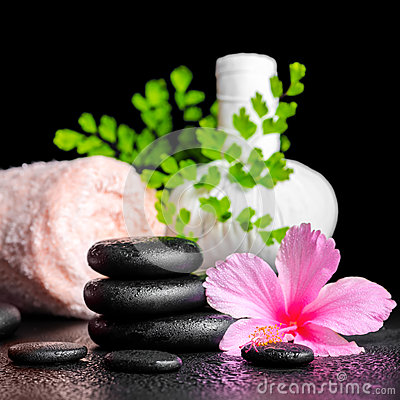 Beautiful spa concept of pink hibiscus flower, leaf fern, thai h Stock Photo