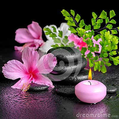 Beautiful spa concept of pink hibiscus flowers, fern branch, can Stock Photo