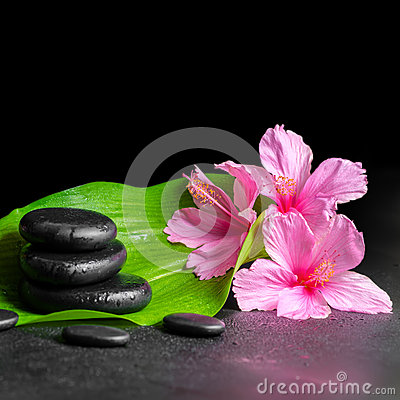 Beautiful spa concept of pink hibiscus flowers, green leaf and s Stock Photo