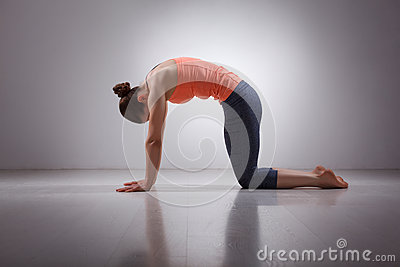 beautiful sporty fit yogini woman practices yoga stock