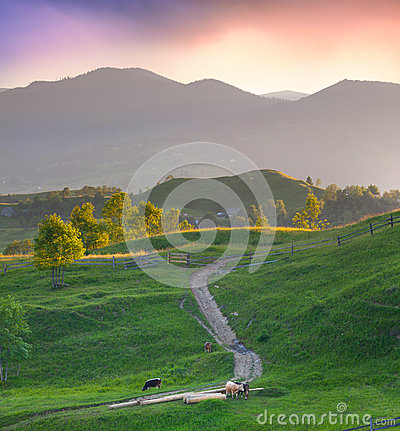 Beautiful Summer Landscape Stock Images - Image: 26846584
