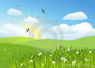 Beautiful sun day / Vector