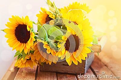 Beautiful sunflower bouquet in wooden box