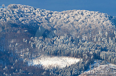 Beautiful sunrise in Carpathian mountains
