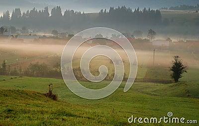 Beautiful sunrise and fog
