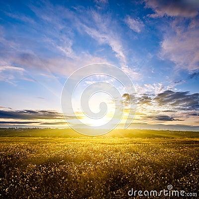 Beautiful sunset above autumn field