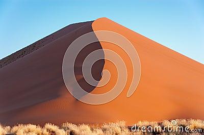 Beautiful sunset dune