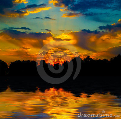 Beautiful sunset in the forest