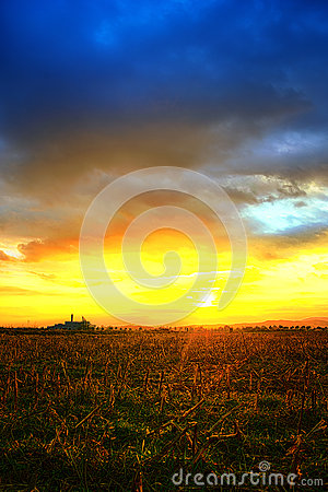 Beautiful sunset over field