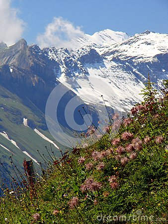 Beautiful Swiss Scenery