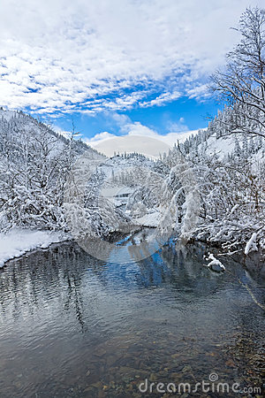 Free Beautiful Taiga Hills On Far East Of Russia In Early October. Taiga In Winter. Beautiful Nature. Frosty Weather Royalty Free Stock Photos - 79221638
