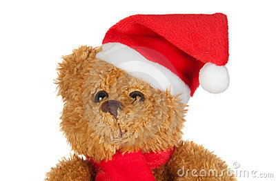 Beautiful teddy bear with scarf and Christmas hat